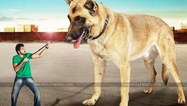 Photo of Naaigal Jaakirathai is a dog movie more than a cop movie: Sibiraj