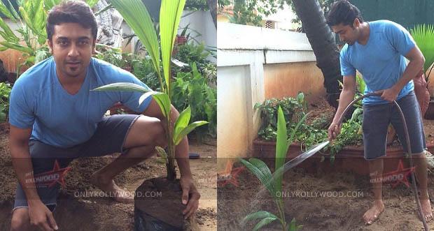 Photo of Suriya nominates Aamir Khan, Mahesh Babu and Kicha Sudeep for My Tree Challenge