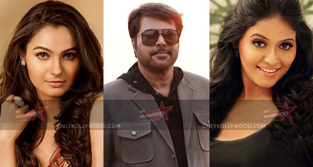 Photo of Anjali or Andrea for Mammooty?