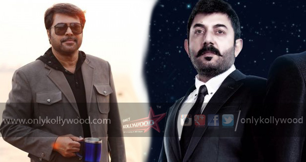 Photo of Arvind Swami to reprise Mammootty's role in Bhaskar The Rascal remake