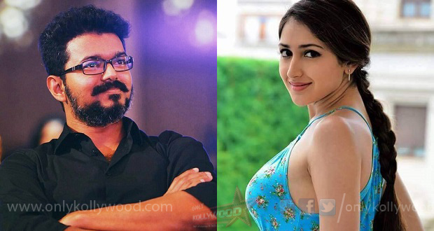 Sayyeshaa denies being approached for Thalapathy 62