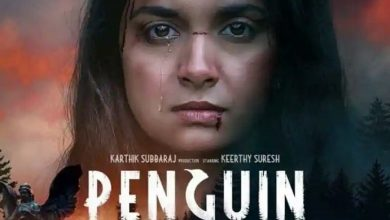 Photo of Penguin Movie Review